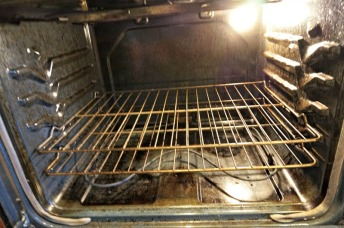 Dirty Dirty Oven